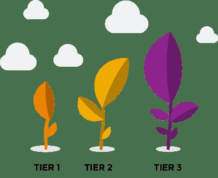 Tier 1-3 Words